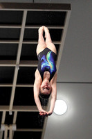 Celie Mullen - Girls C Platform Final 002
