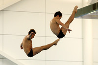 Thomas Daley & Daniel Goodfellow 005