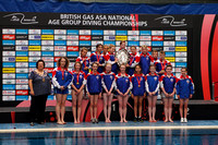 2013 ASA National Age Group Diving Championships
