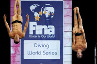 2013 FINA / MIDEA Diving World Series, Edinburgh