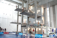 2013 British Gas Diving Championships