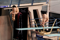 Men's 3m Synchro - Dingley & Denny 001