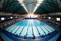 2014 British Gas Diving Championships