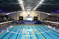 2010 British Gas Swimming Championships
