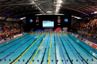 2013 British Gas Swimming Championships